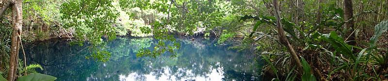Cenote Angelita. Yucatán