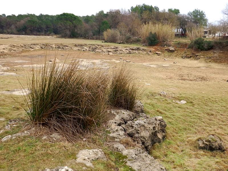 Clot en sequía