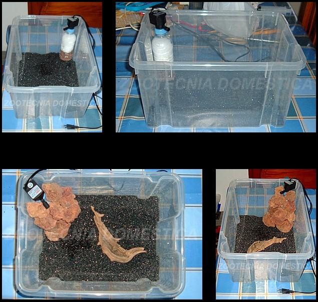 Secuencia montaje acuario plástico