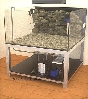 Montaje arrecife