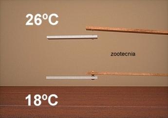 Bimetal termostato