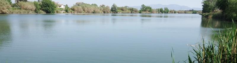 Estuario Fluviá