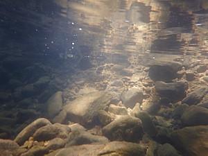 Tramo alto Fluviá, Bas