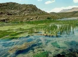 Humedal de Gandoman