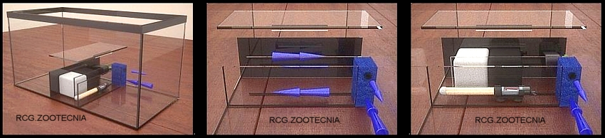 Laberinto doble acuaterrario