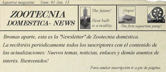 Newsletter Zootecnia domestica