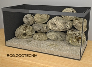 Biotopo rocoso