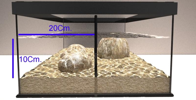 Stream aquarium con laberinto, caudal aproximado