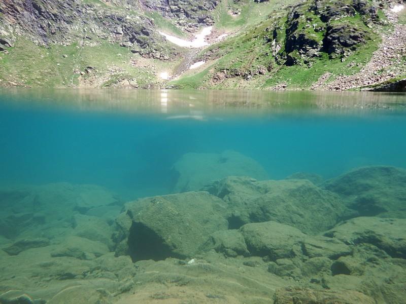Ecosistema léntico, Tristaina, Andorra