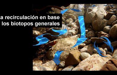 Recirculación según biotopo