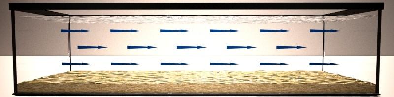 Recirculación acuario biotopo lótico flujo laminar