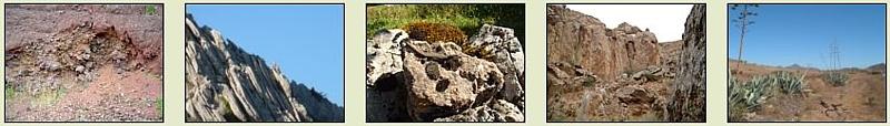 Biotopos rocosos