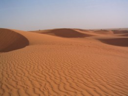Dunas en Mauritania (Erg)