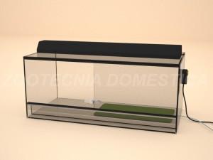 Terrario vidrio bajo