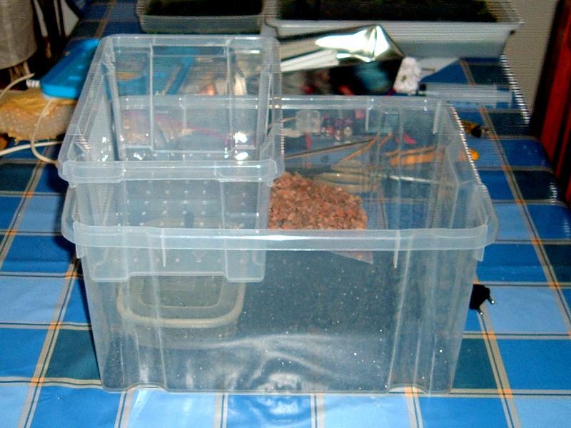 Tortuguera con cajas ordenaci n for Tortuguero casero