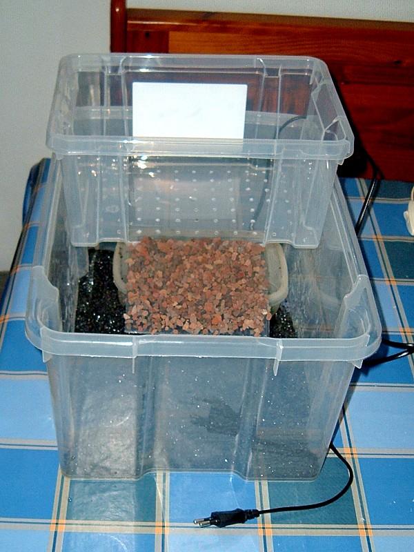 Tortuguera Con Cajas Ordenación Zootecniadomestica Com