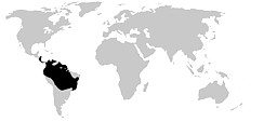 Rango de distribución denrobátidos