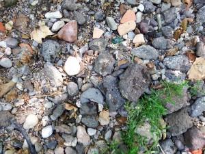 Composición del suelo