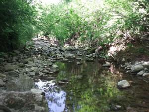 Valle de Bas, tramo rocoso