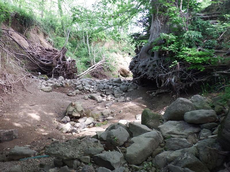 Sequía en tramo arcilloso. Valle de Bas