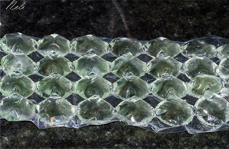 Fitoplancton liofilizado, conservación
