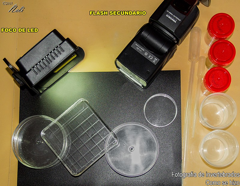 Macrofotografia, componentes