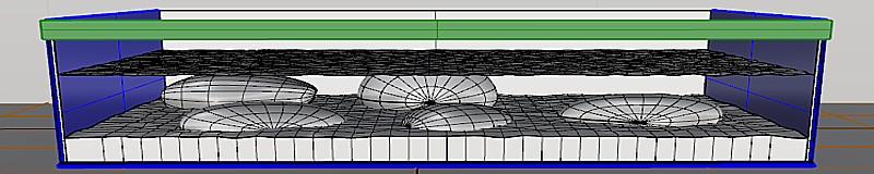 Acuario fluvial, diseño