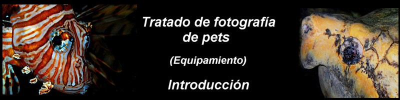 Tratado_panoramica_cap_00