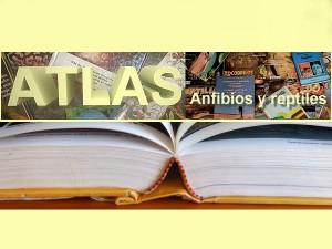 atlas reptiles destacada