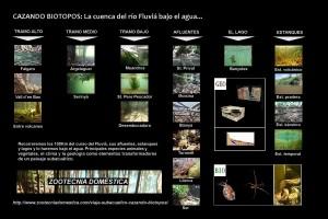 Cazando biotopos. Esquema gral.