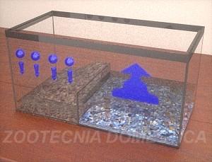 Hidrología acuaterrario