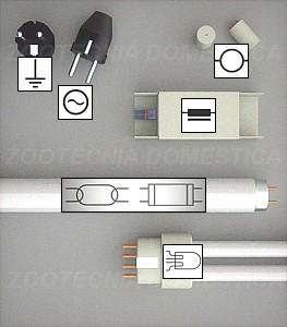 Simbología fluorescentes