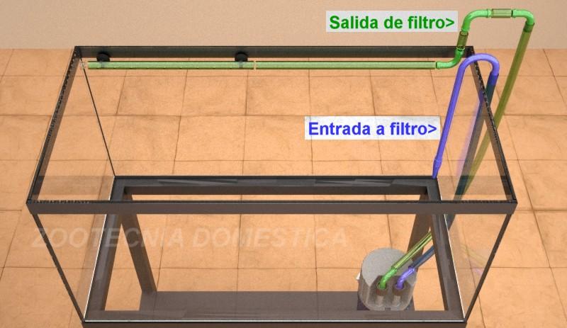 Disposición mangueras filtro exterior