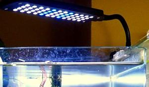 Foco pinza dip LED