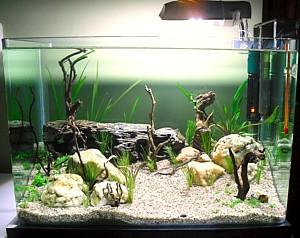 acuario nano