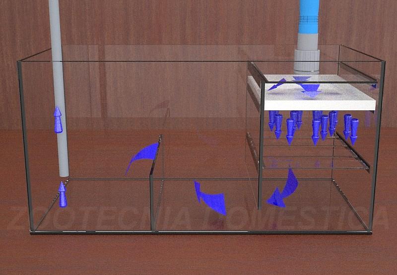 Secohúmedo, diagrama de flujos