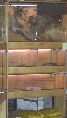Batería de madera