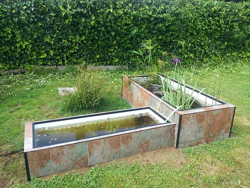 Estanques con neveras for Plantas para estanques de agua fria
