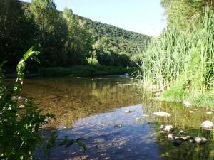 Fluviá tramo medio, Llierca