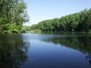 Fluviá tramo medio, represa Serinyà