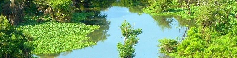 Río Orinoco