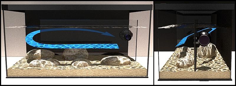 Stream aquarium laberinto