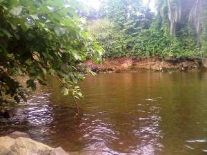 Fluvial africano