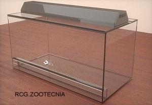 Terrario vidrio montado