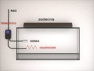 Esquema conexión termostato