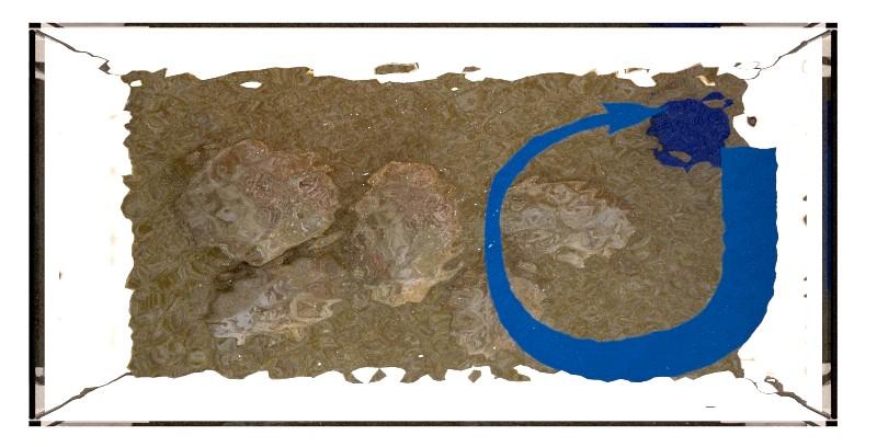 Recirculación parcial, biotopo léntico