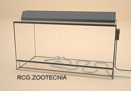 Terrario vidrio con cable