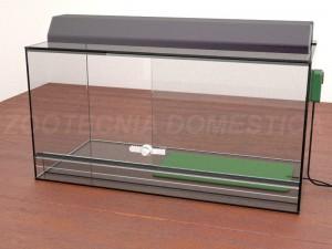 Terrario vidrio con esterilla