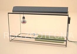 Terrario de vidrio con esterilla y foco