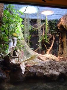 Terrario en el Zoo de BCN